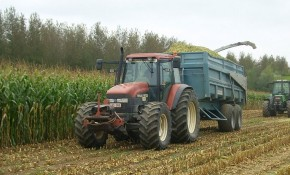 Agriculture en Hesbaye brabançonne